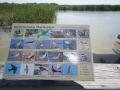 Port Aransas Nature Preserve