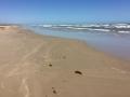 Pláže Mexického zálivu